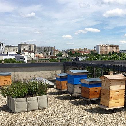 La banque Milleis avec cepovett sur les toits de Paris